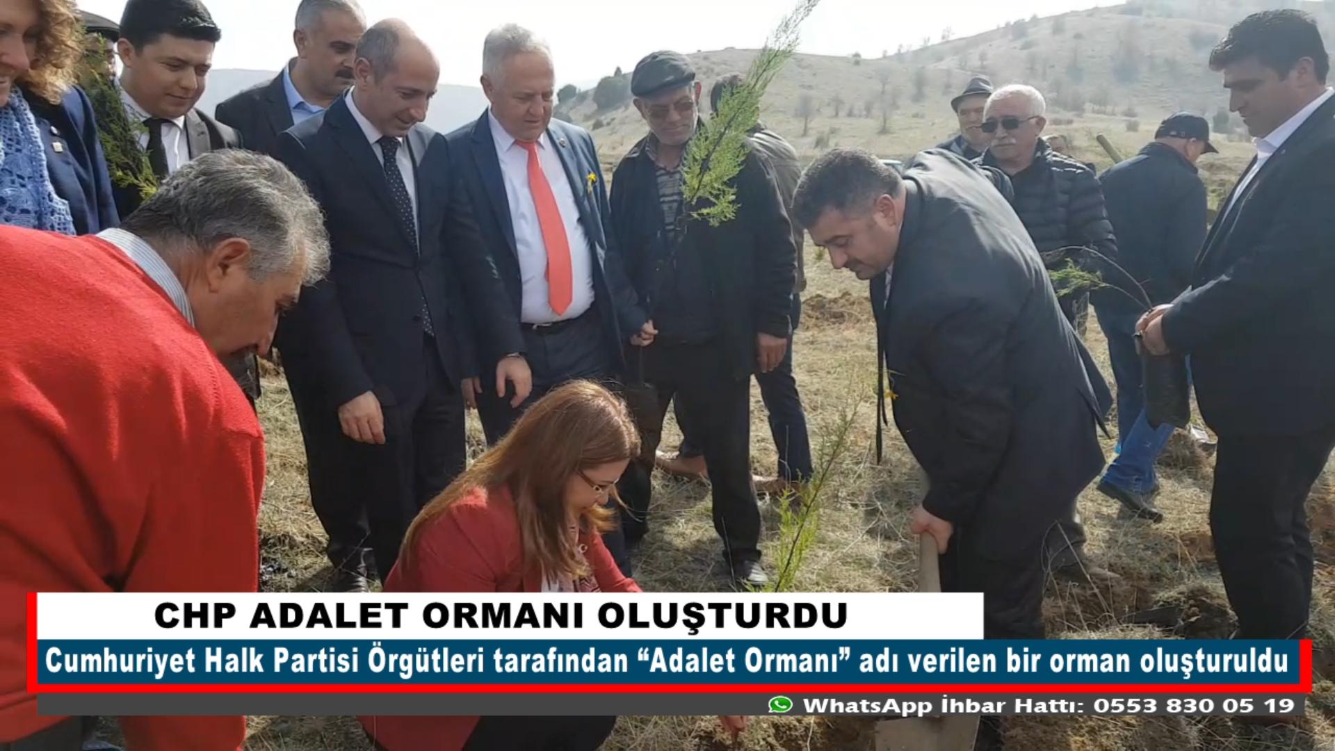 CHP ADALET ORMANI OLUŞTURDU