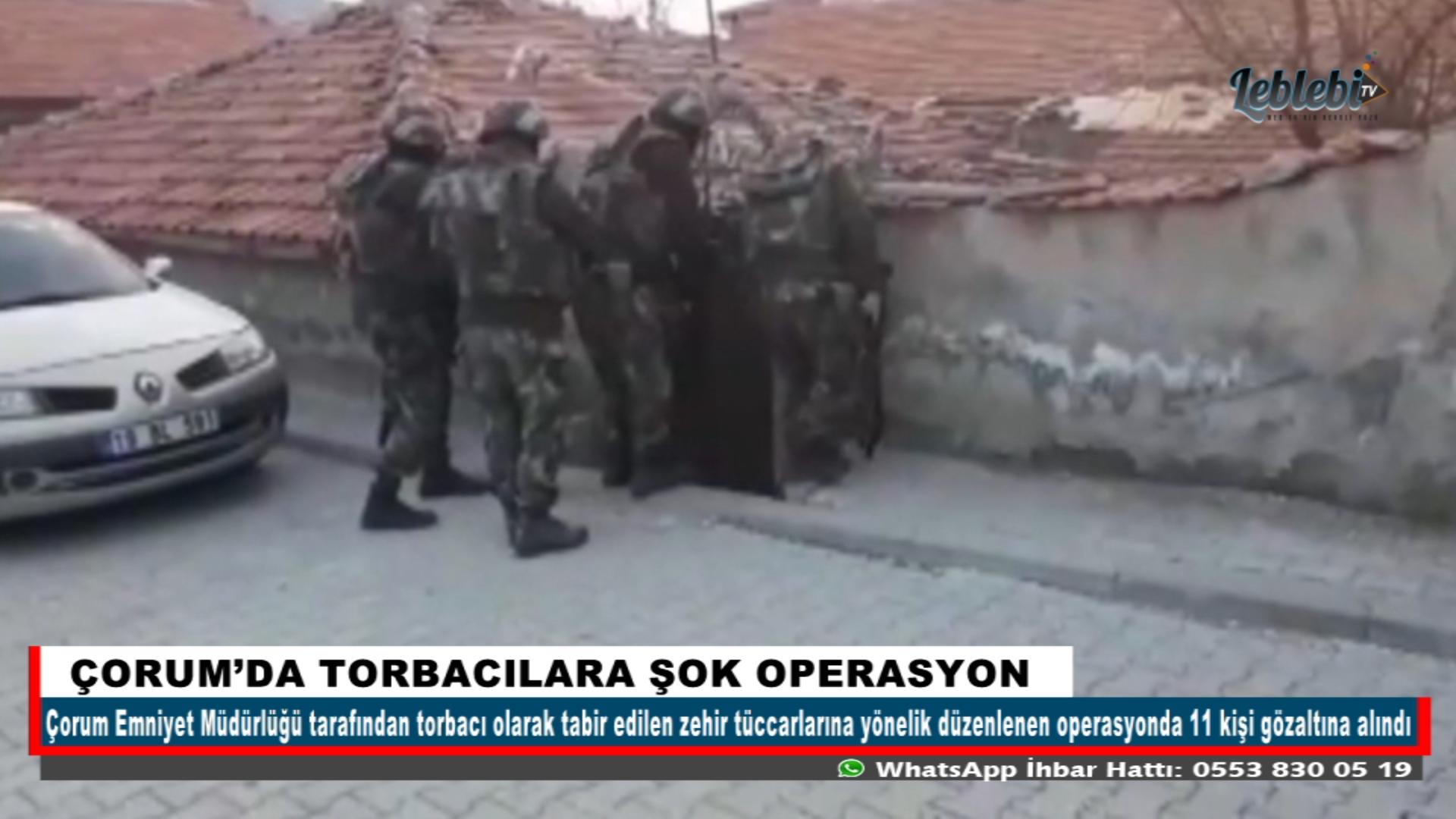 ÇORUM'DA TORBACILARA ŞOK OPERASYON