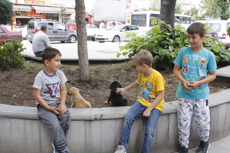 Minikler Köpek Yavrularını Arabanın Altında Ezilmekten Kurtardılar