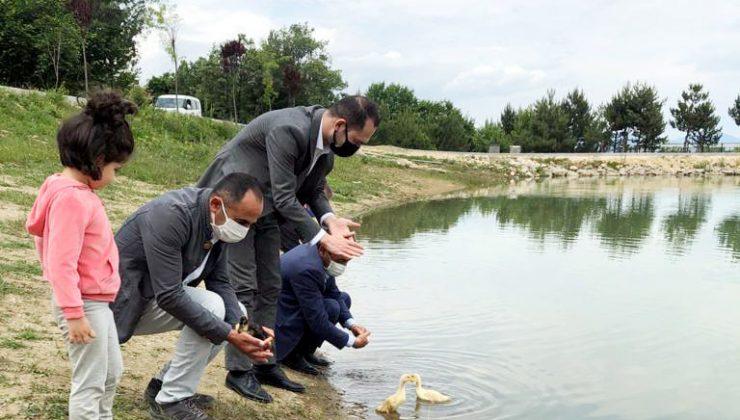 Saklı Cennet 'Yeşil Göl'e Ördek Yavrusu Bırakıldı