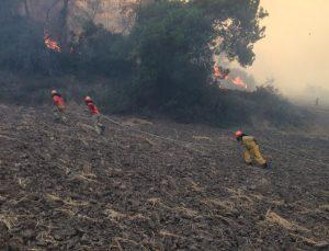 Çorum Ekibinden Sevindirici Haber, Adana Karaisalı'daki Yangın Söndürüldü