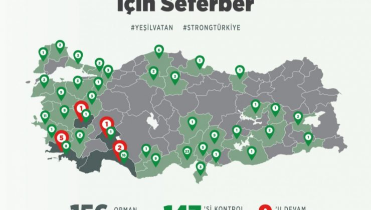 Türkiye'de Orman Yangınlarının Devam Ettiği Bölgeler